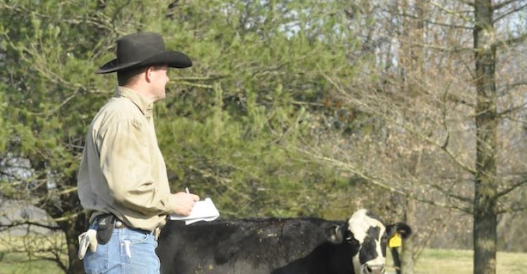 beef records are vital to management success