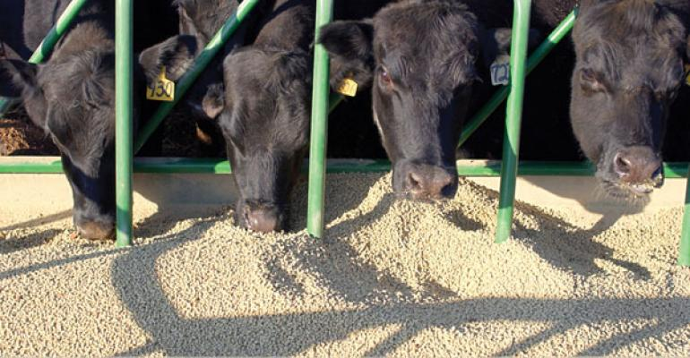 FDA guidelines will require veterinary feed directives for cattle feed additives