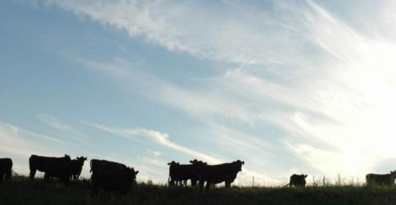 Spring Rains Rally Our Ranch Hopes, But Is It Too Little Too Late?