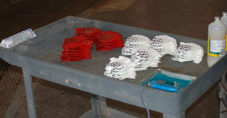 cattle id system and ear tags