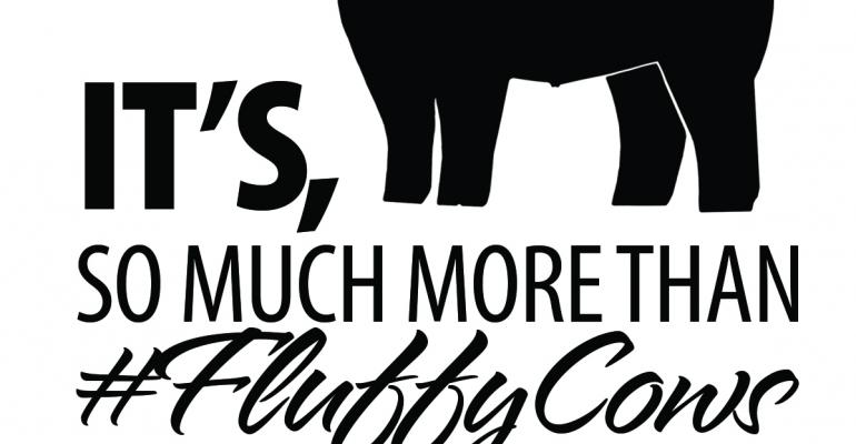 lautner farms responds to viral fluffy cow hype