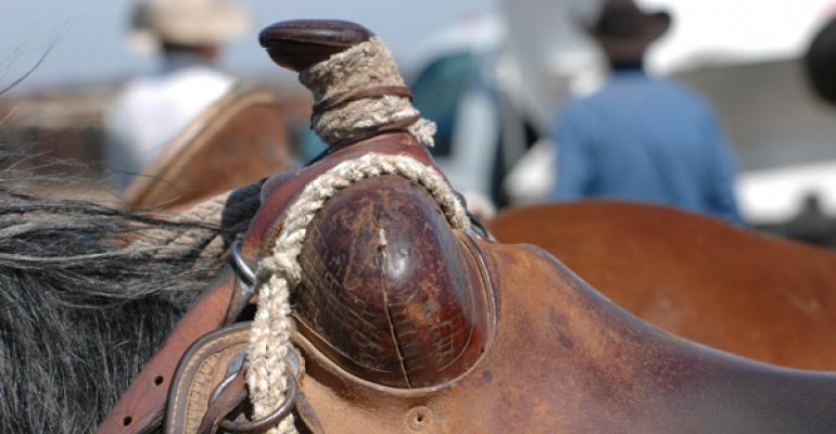 Cattle Branding and beef industry news