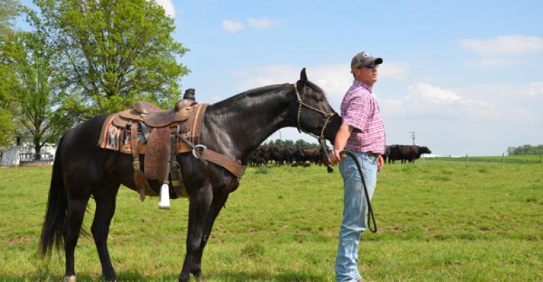 horse cloning regulation