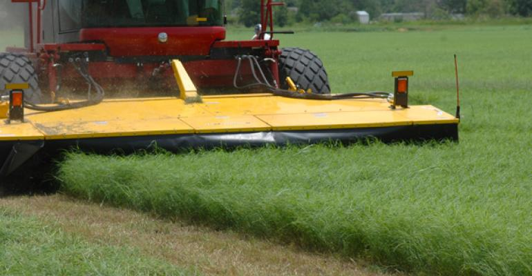 hay prices impacted by many factors