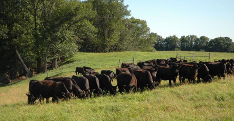 how to rebuild cowherd