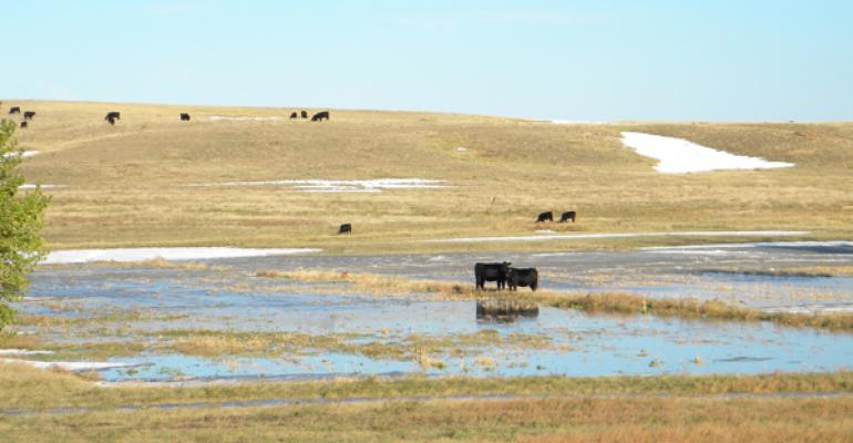 ranchers will prevail after winter storm atlas
