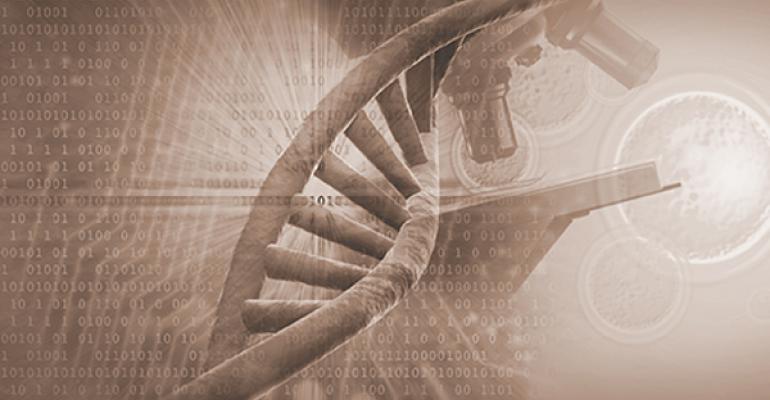 how to use genomics in cattle herd