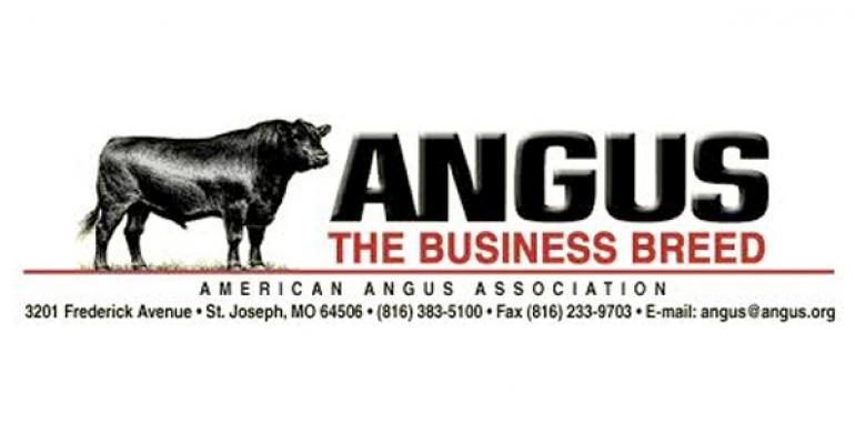 It's Bigger, But Angus Shares Much With Its Smaller Counterparts