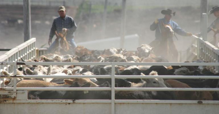 cattle prices during government shutdown