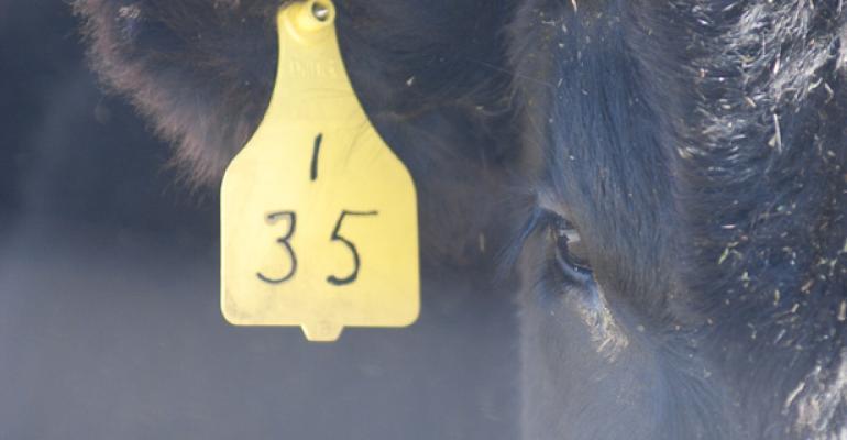 usda report shows heifer retention is underway