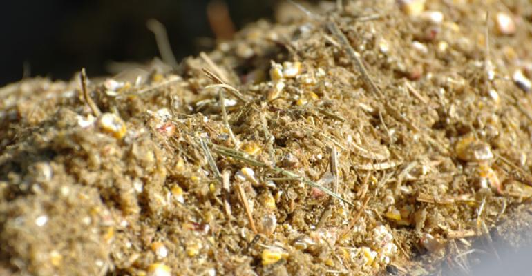 distillers grain fat and energy content