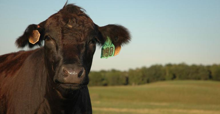 cattle inventory report summary
