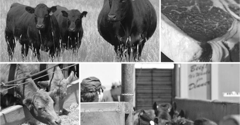 Beef Industry Sector Leaders Give Their Unique Perspectives On What's Ahead