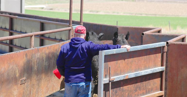 convenience added to cattle delivery