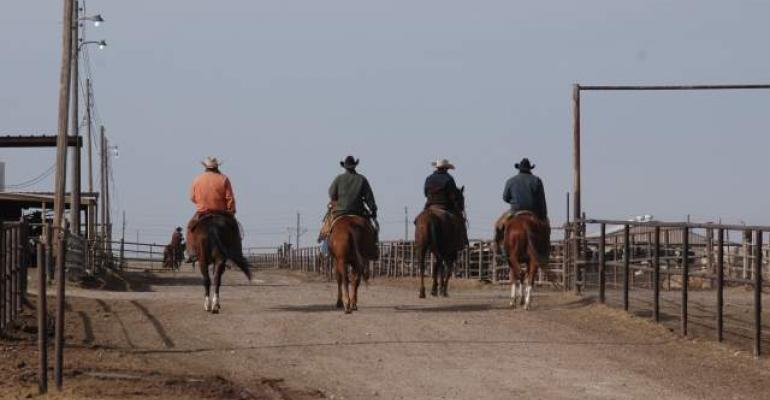 Horsehide technology