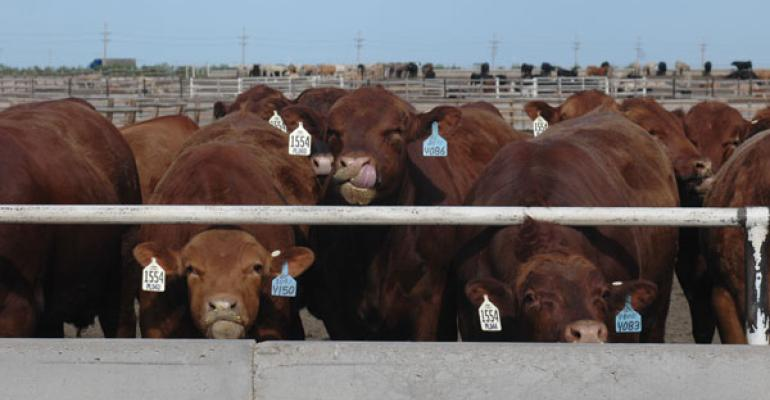 beef production down 5