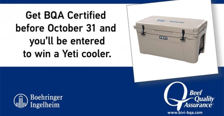 free bqa certification