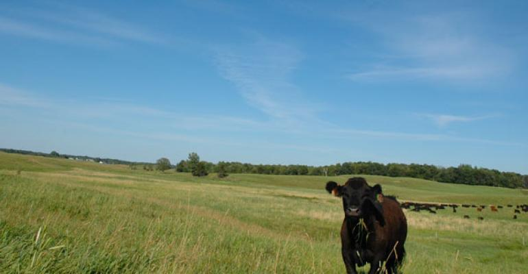 facts beef advocate communications Big Ag Business journalists misinformed