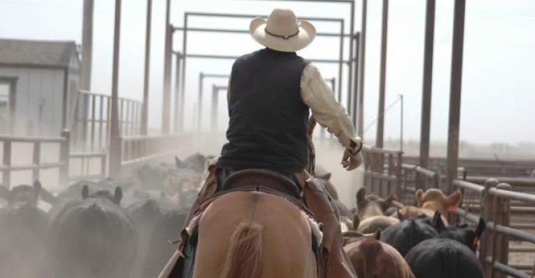 Immigration reform critical for beef industry