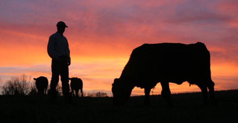 5 biggest themes for the U.S. cattle industry in 2014
