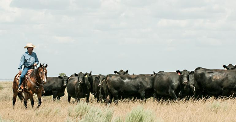 Beef cattle genomics come full circle