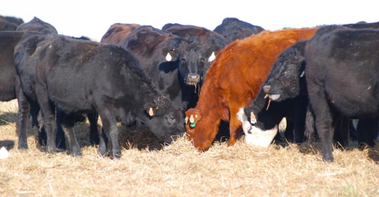 Sporadic cow supplementation is better than no supplementation