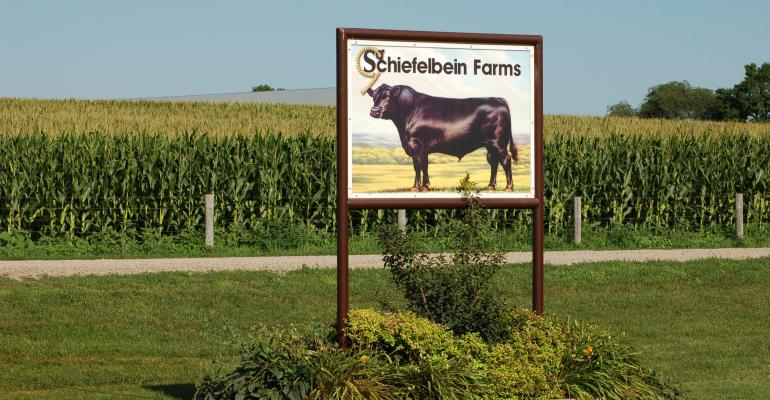 How Schiefelbein Farms made room on the ranch for nine sons