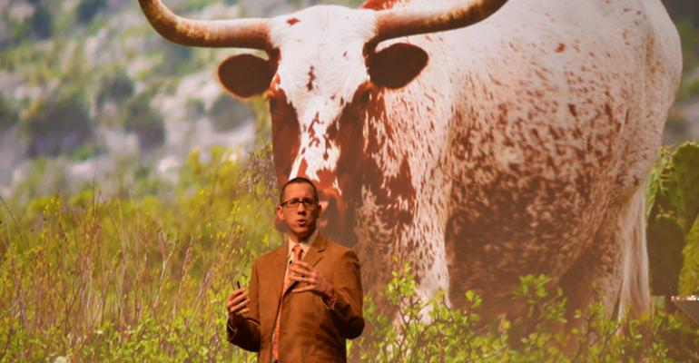 CattleFax: Better weather, continued strong feeder prices on tap for 2015