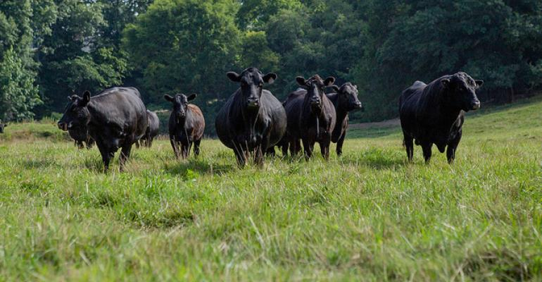 4 things to cross off your to-do list before breeding season begins