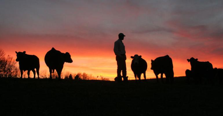 Why are beef producers always focused on the negative?