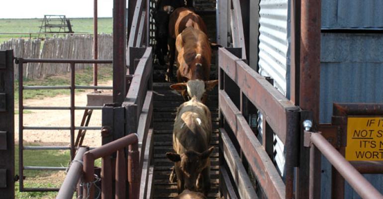 Tom Noffsinger: 5 end-goals of proper animal handling