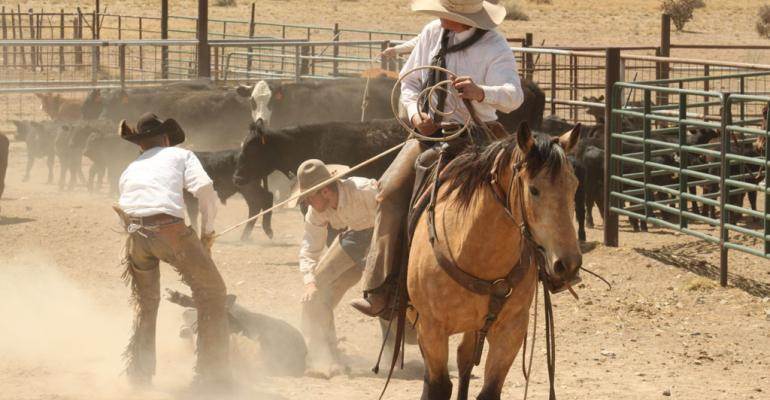10 traits of a hard-working rancher; PLUS: Reader photos of ranches at work
