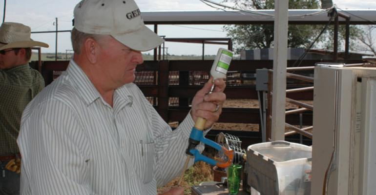Cattle producers under the microscope; good antibiotic stewardship is a must