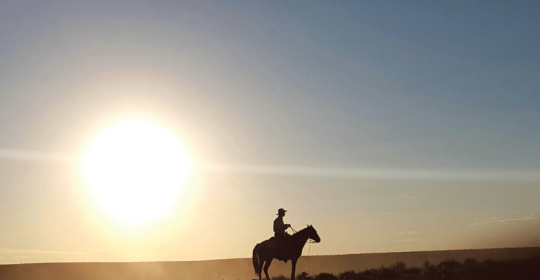 No capital? Little money? This young rancher proves cattle business is still possible