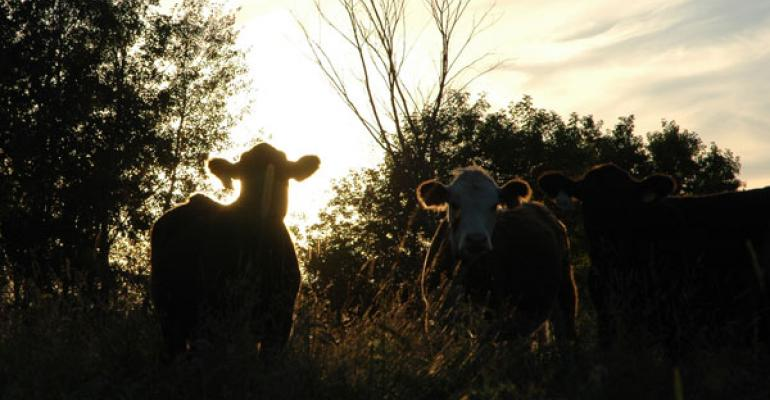 Striving toward sustainable ranch management