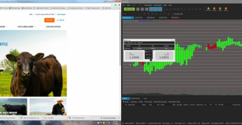 Zoetis rebuilds its preconditioning website