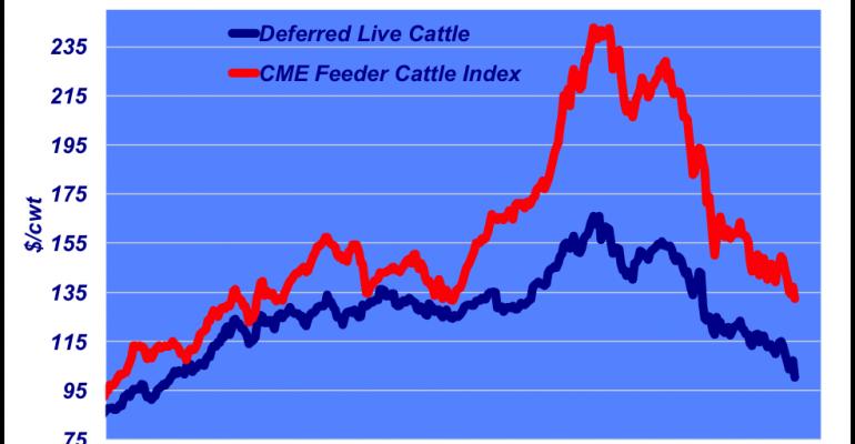 Feeder cattle market trends