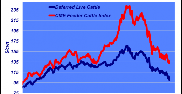Feeder cattle market trends