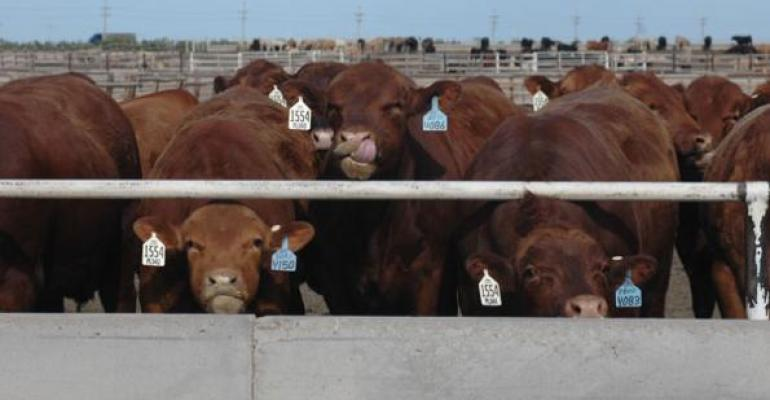 Alternative cattle marketing decisions for tough times