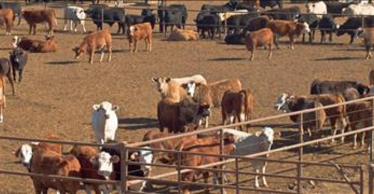 Class action lawsuit filed against beef packers