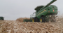 This Week in Agribusiness - Harvest in Kansas