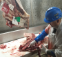 A significant amount of trimming is necessary when a carcass contains lead shot. This results in loss to the packer. Caviness Beef Packers used sophisticated technology to detect any carcass blemishes, such as injection sites or lead shot.