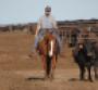 Sorting off a sick steer