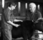 Vet using a stethoscope on a calf