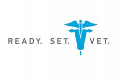 RSV-Logo[2].png