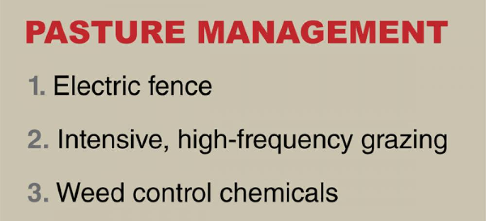 What were the most important innovations in pasture management?