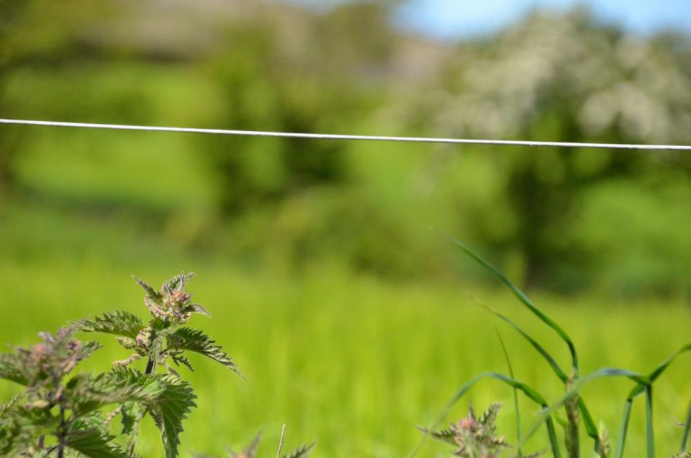 electric fence grounding tips