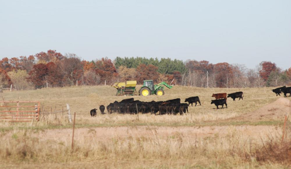 Reduce Winter Hay Needs By 33%