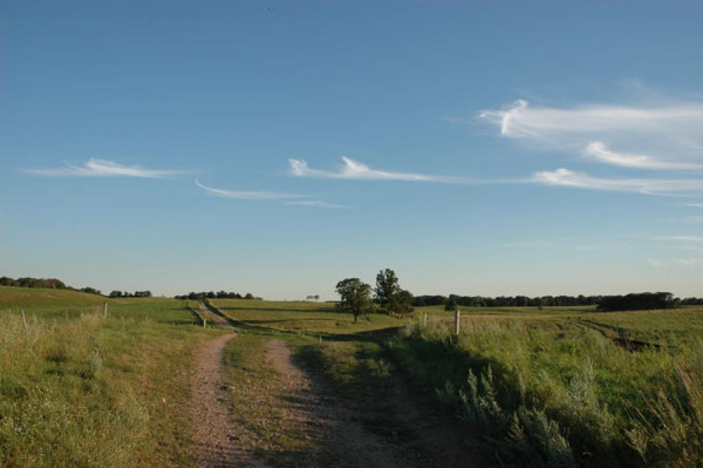ag land sales in Wisconsin Texas