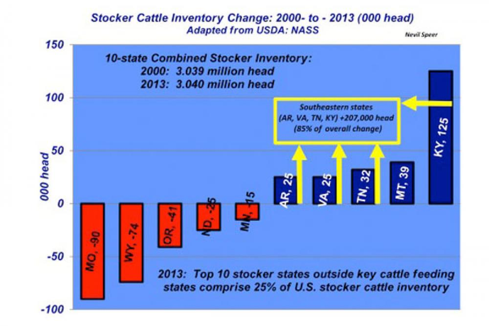 stocker cattle inventory change